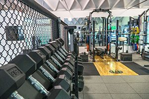 Strength Training West Los Angeles